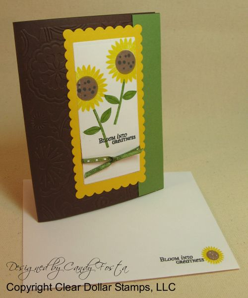 SunflowerSongsCF4