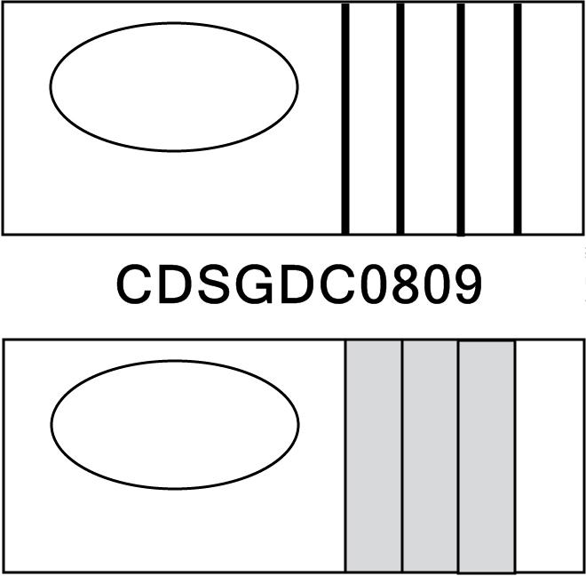 Cdsgdc0809