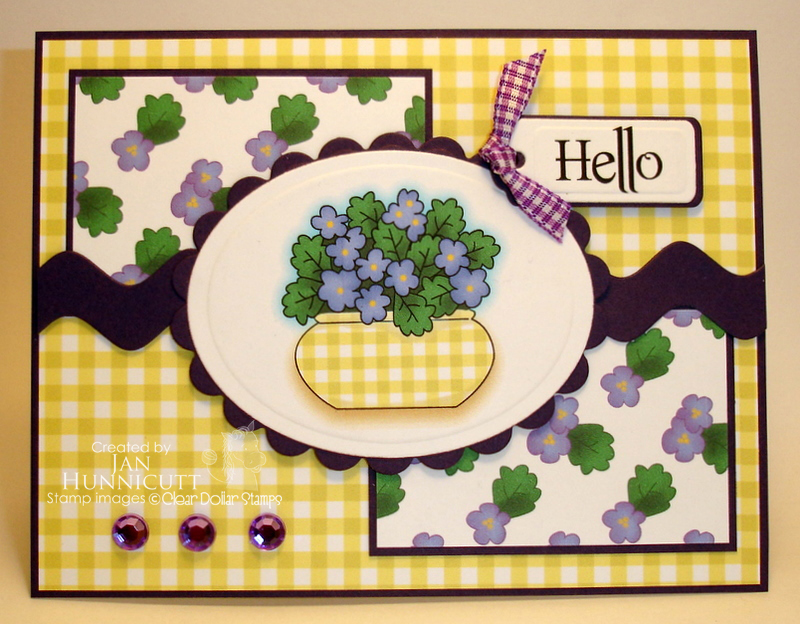 CDS Spring Violets -- Jan