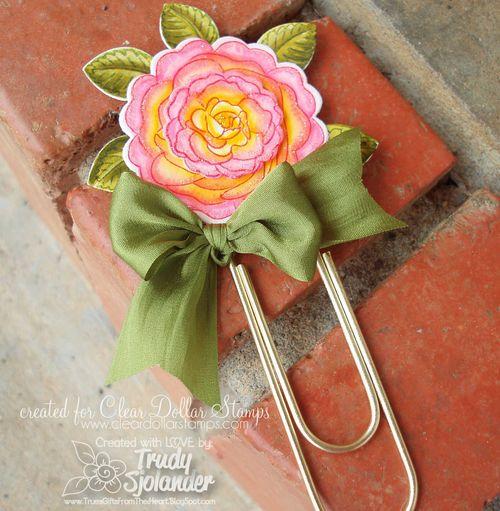 RosesToDieForTS5