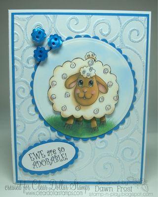 Adorable ewe