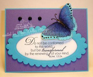 8 5 11 CDS New Butterfly FEB